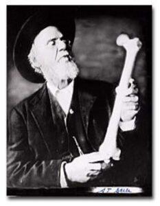 andrew taylor still fundador de la osteopatia