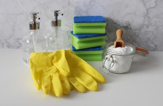 limpiar casa-En manos de Nara