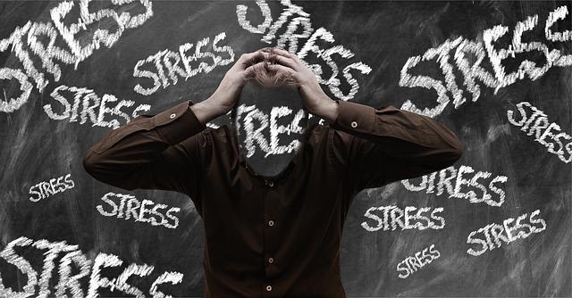 stress-En Manos de Nara