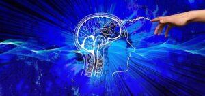 activacion cerebro-En Manos de Nara