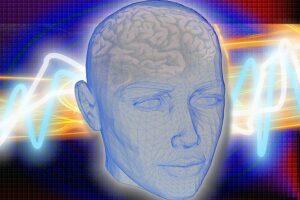 cerebro emociones-En Manos de Nara