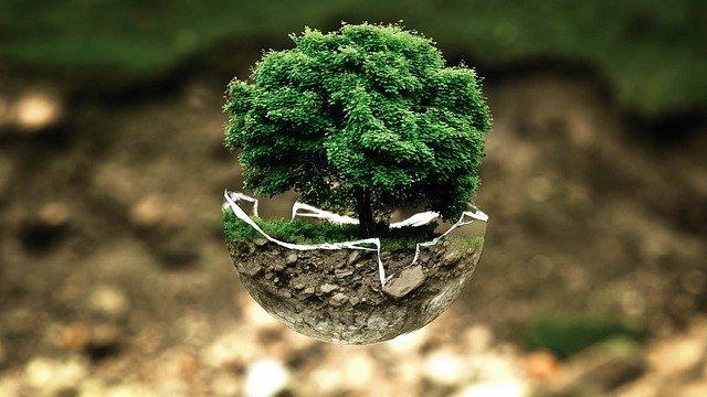 ecologico-En Manos de Nara